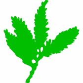 Sequoia Technology Partners X, LP